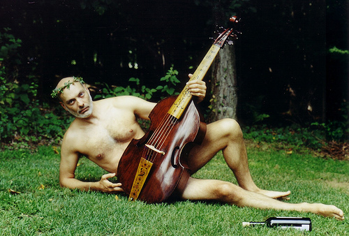 viola da gamba in the grass
