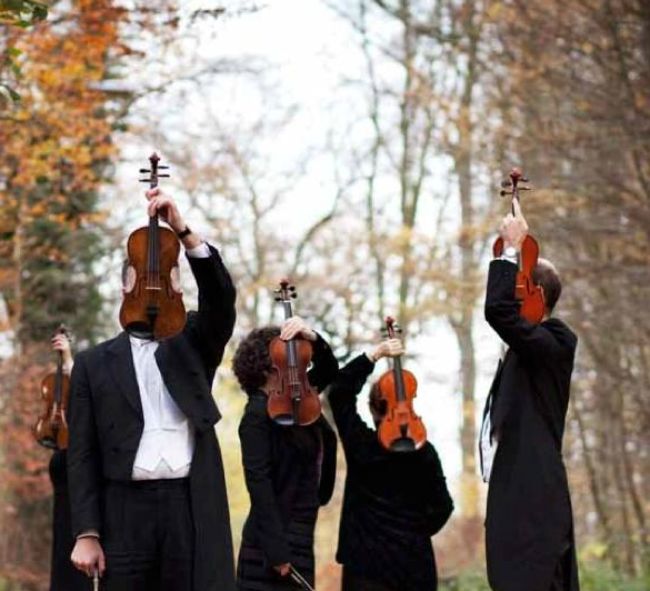 violinists-hiding-faces-with-violins